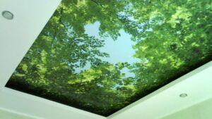 Экосольвентная и УФ фотопечать на натяжных потолках в Санкт-Петербурге шириной до 5м