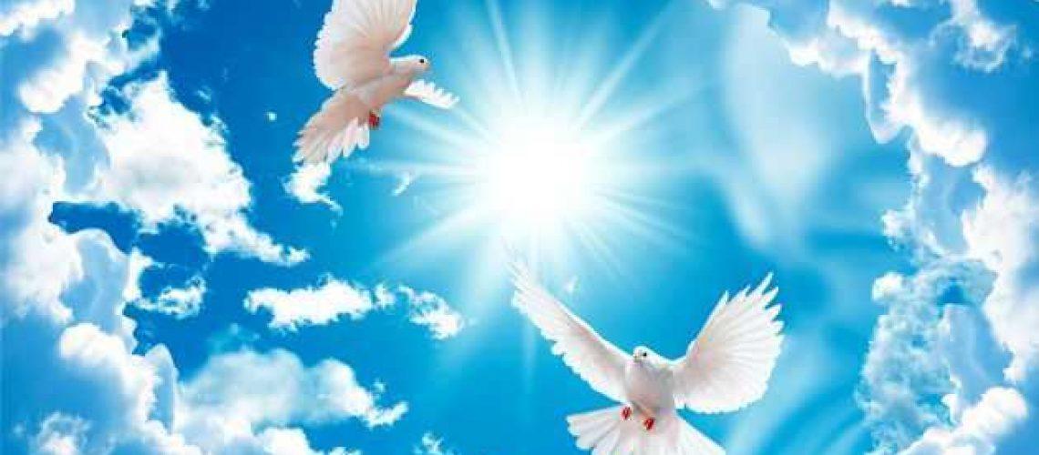 облака и голуби3